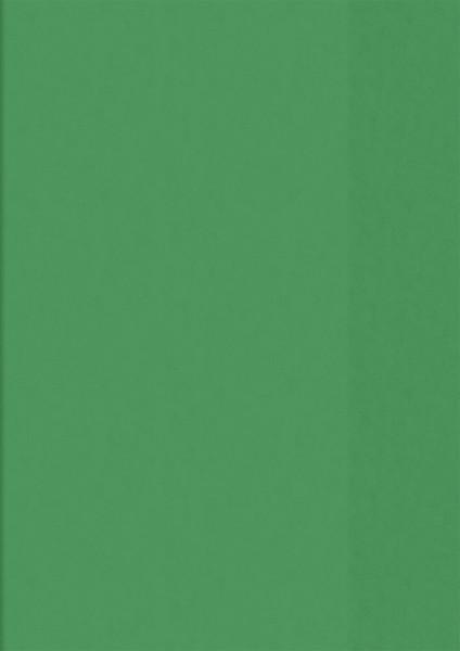 Hefthülle A5 grün transp