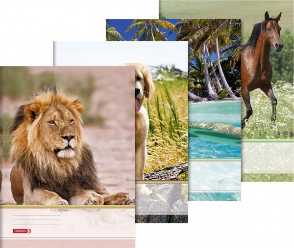 Sammelmappe A3 Tiere